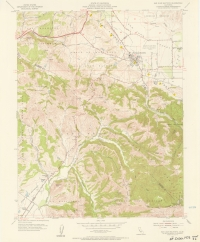 Aerial photo index map flight: 19732